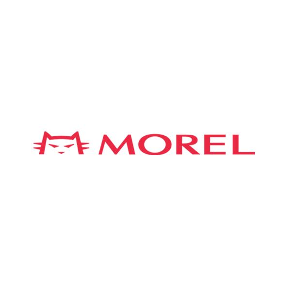 Morel Homme